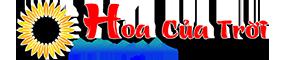 hoacuatroi.com